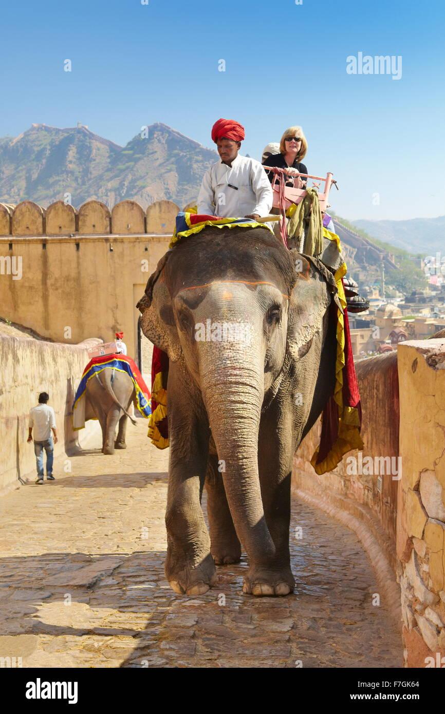 I turisti a cavallo di un elefante (Elephas maximus) al Forte Amber Ambra Palace, Amer 11km da Jaipur, Rajasthan, Immagini Stock