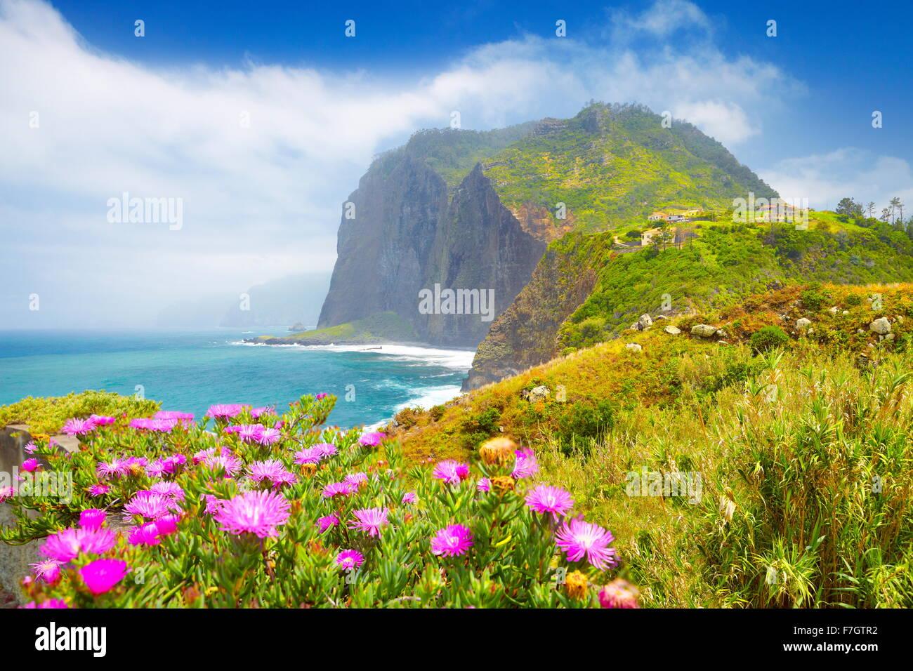 Madeira - Paesaggio con fiori e cliff litorale nei pressi di Ponta Delgada, l'isola di Madeira, Portogallo Immagini Stock