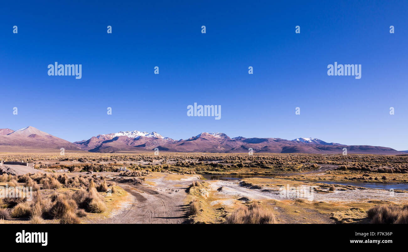 Alta tundra andina nel paesaggio delle montagne delle Ande. Il meteo altipiani andini Puna prateria ecoregione, Immagini Stock