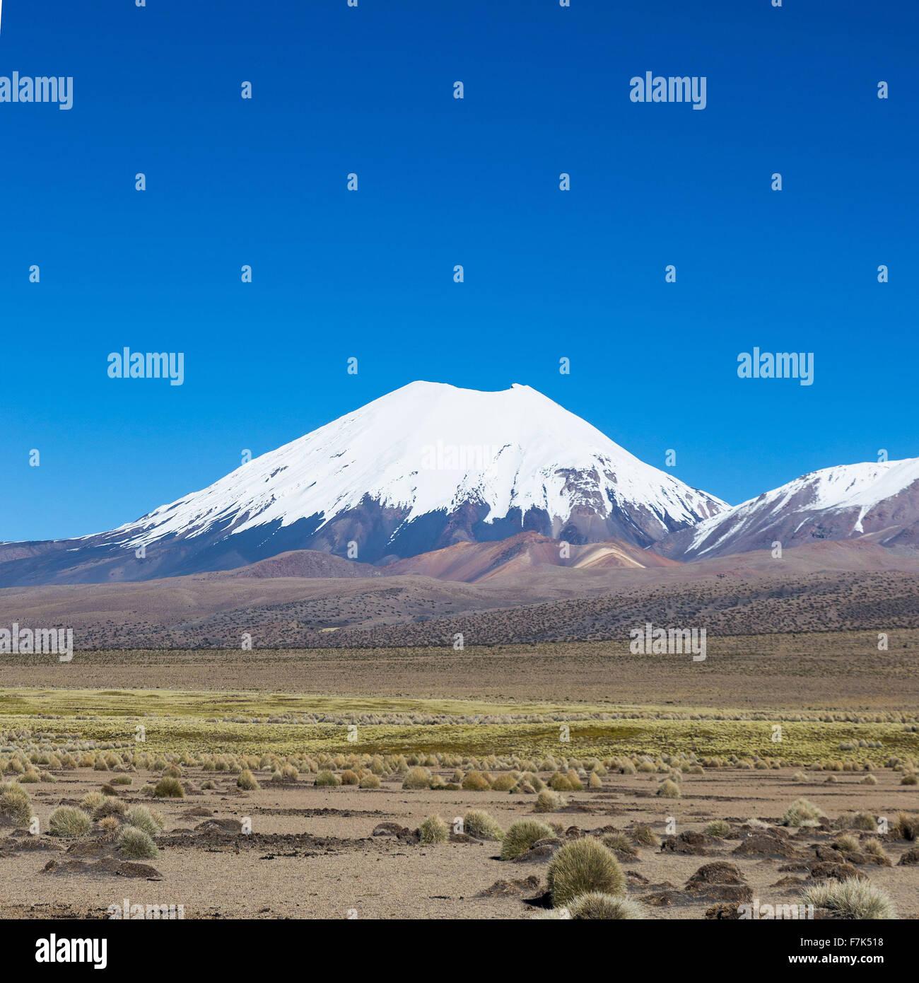 Vulcano Parinacota. Alta paesaggio andino nelle Ande. Alta tundra andina nel paesaggio delle montagne delle Ande. Immagini Stock