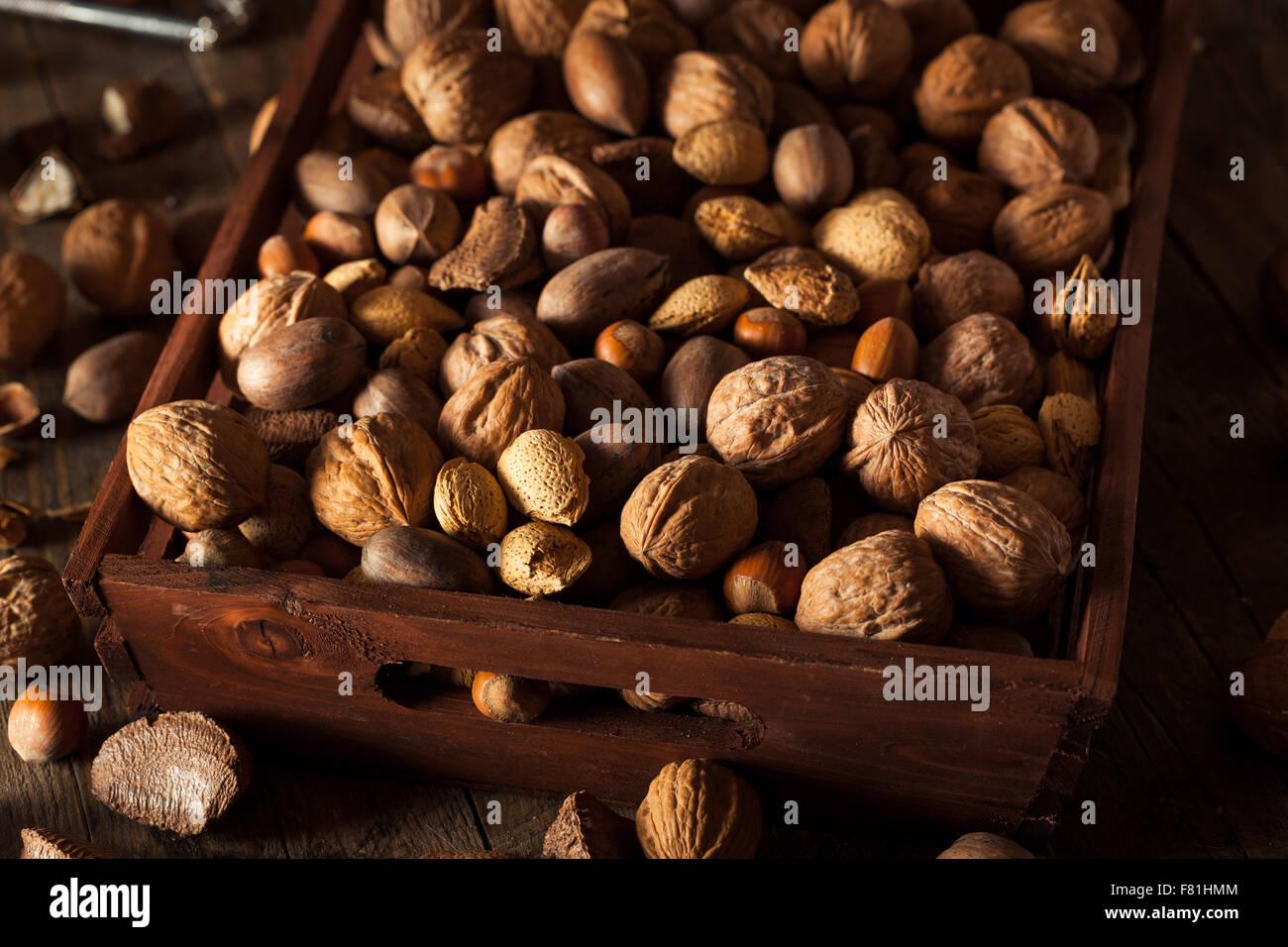 Un assortimento di misti organico i dadi con le noci le mandorle e le noci pecan Immagini Stock