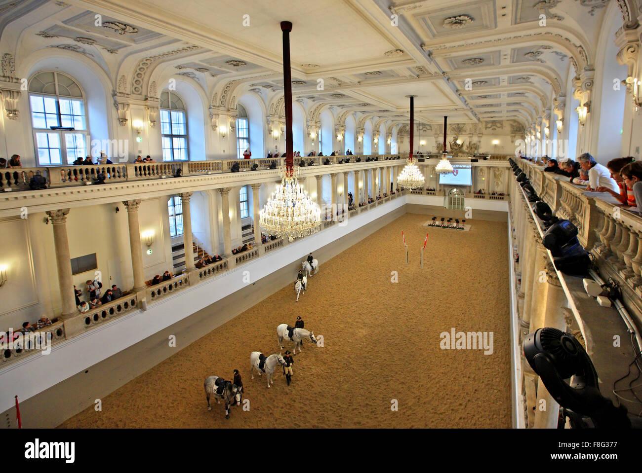 Mattina di formazione nella Scuola di Equitazione Spagnola, Hofburg, Austria, Vienna. Immagini Stock