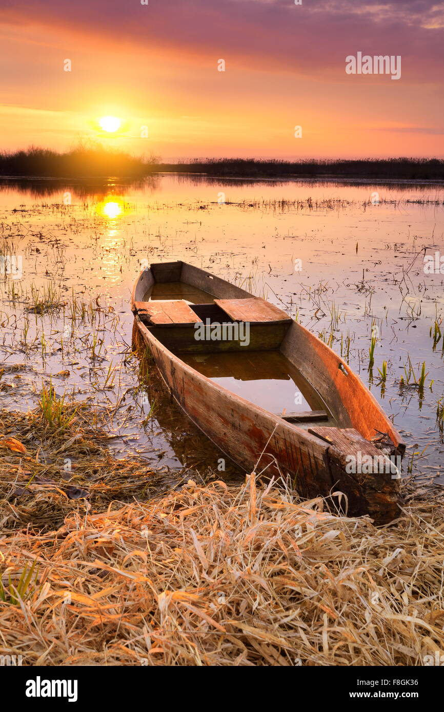 Sunrise paesaggio di Biebrza National Park, Polonia Immagini Stock