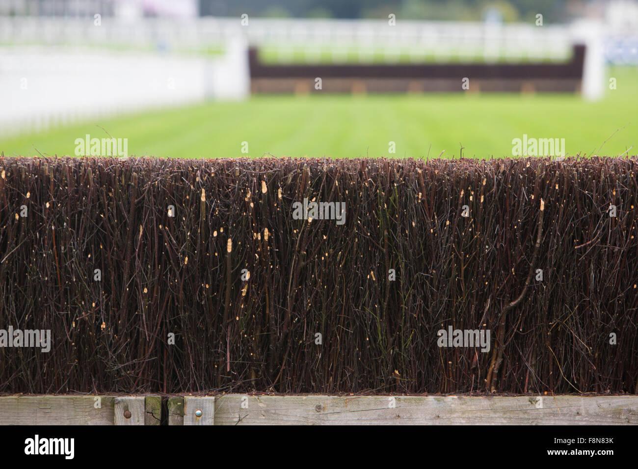 Recinzione su corse di cavalli via Immagini Stock