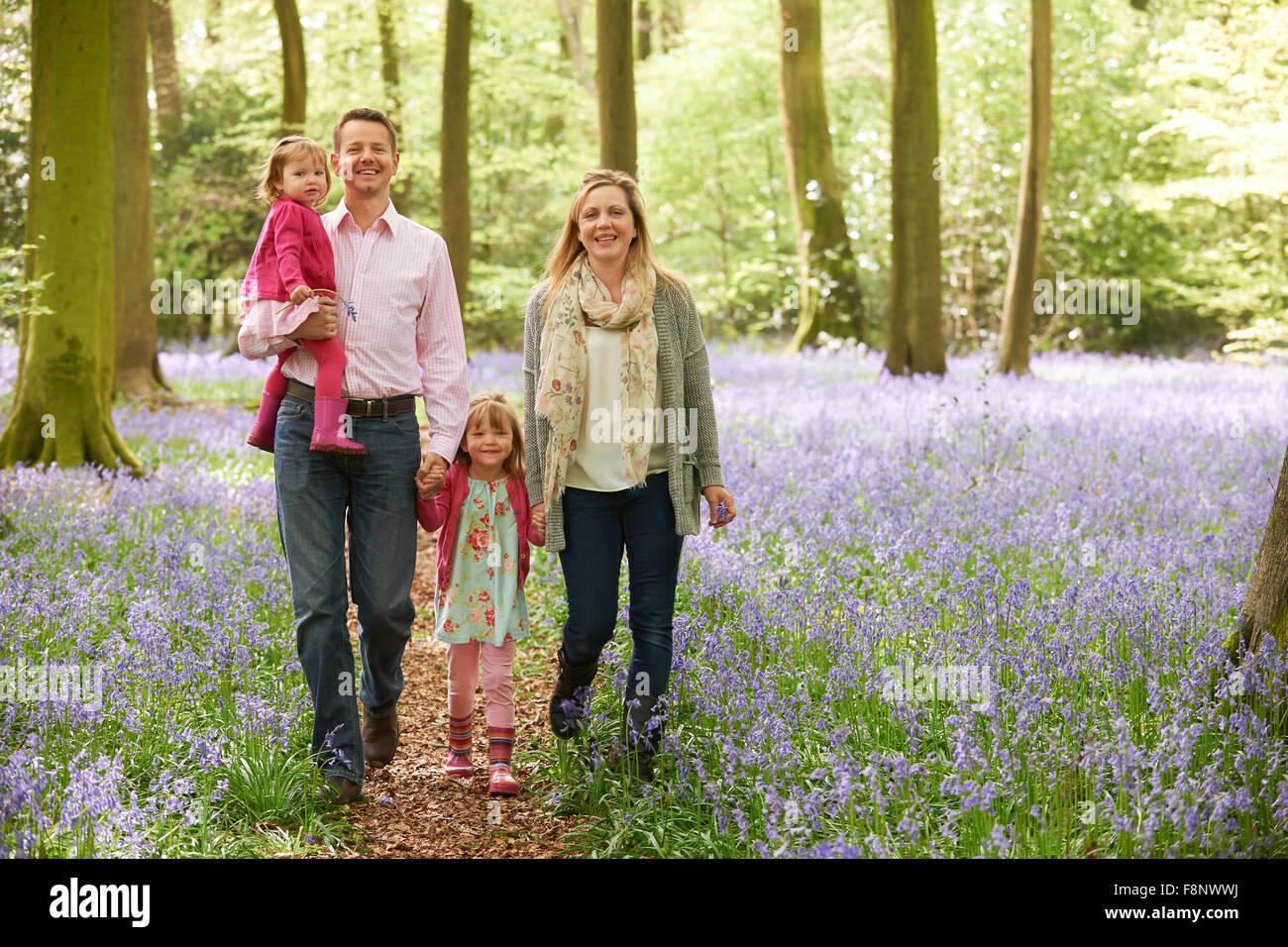 Famiglia passeggiate attraverso boschi Bluebell insieme Immagini Stock