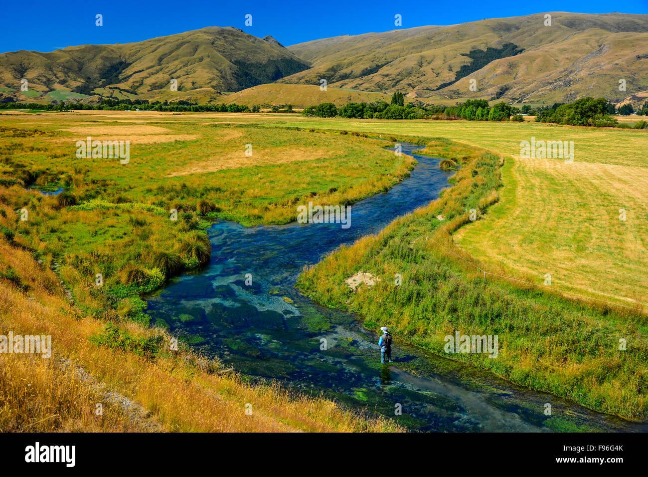 Southland Spring Creek, Nuova Zelanda Immagini Stock