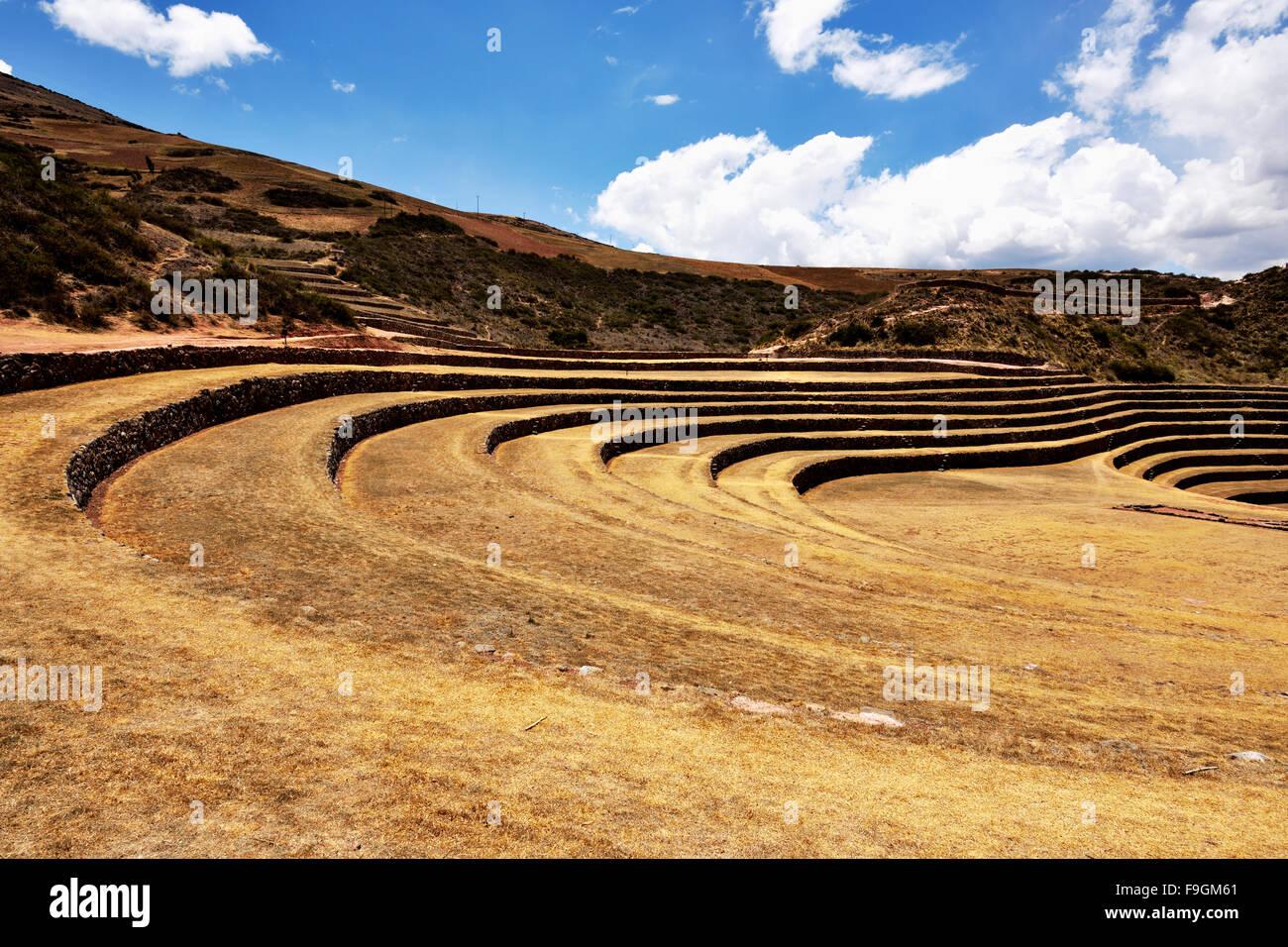 Terrazze Inca nella Valle Sacra, agricoltura, murene, Ollantaytambo, Perù Immagini Stock