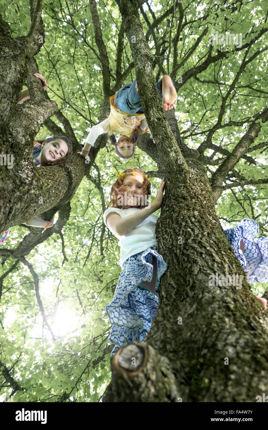 Ragazze arrampicata sugli alberi, Monaco di Baviera, Germania Immagini Stock