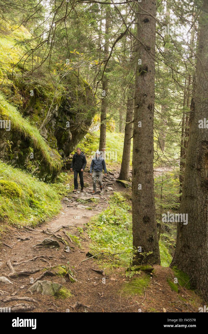 Due coppia gli escursionisti a piedi nella foresta, Alpi austriache, Carinzia, Austria Immagini Stock