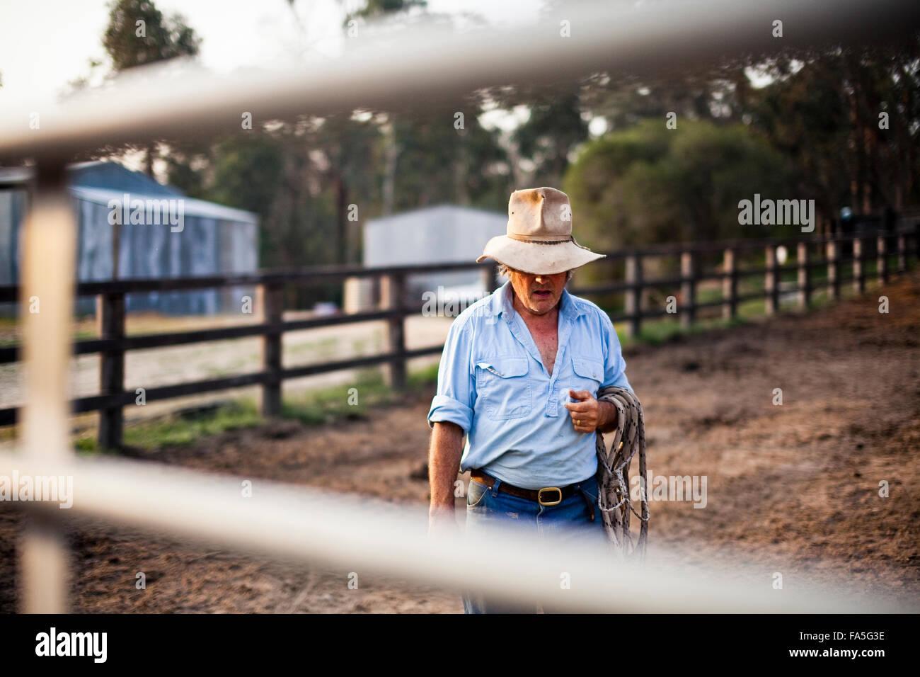 Australian stockman e alto paese imprenditore del turismo, Steve Baird, nel cavallo cantiere alla molla di Sperone. Immagini Stock