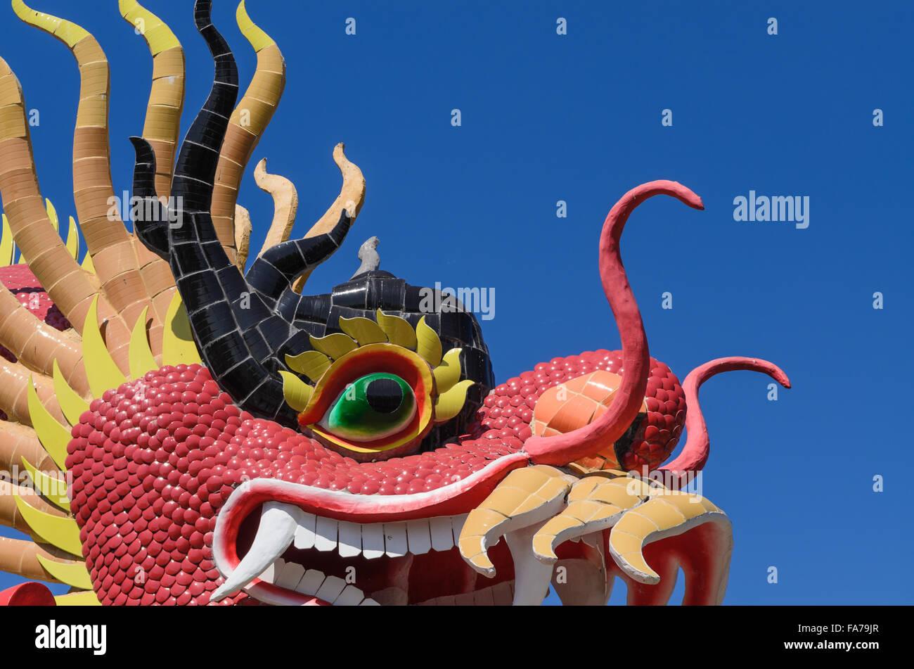 Drago Cinese In Un Parco Pubblico Immagine Su Sfondo Blu Foto