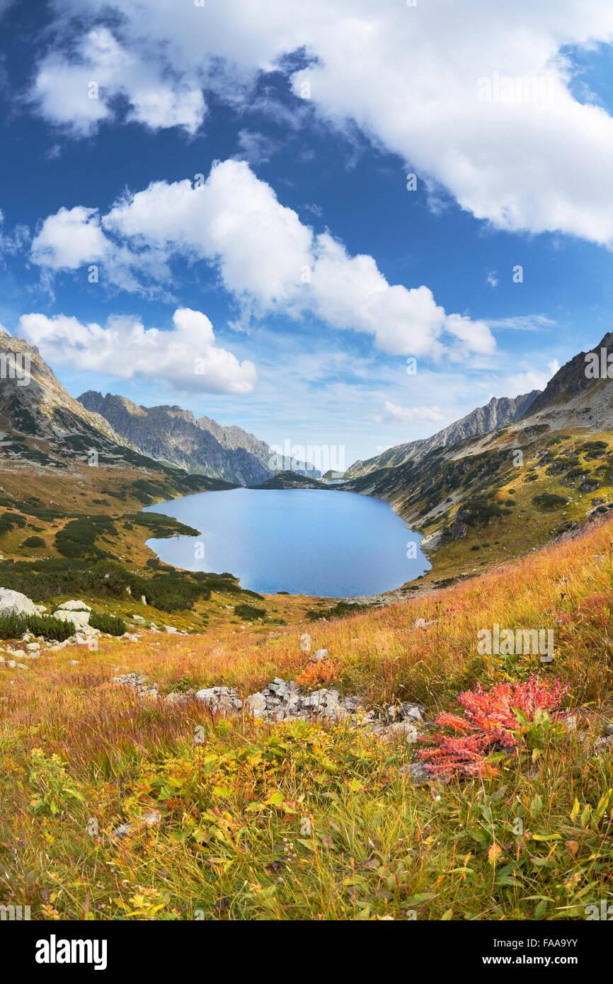 Monti Tatra, cinque laghi Valley, Polonia Immagini Stock