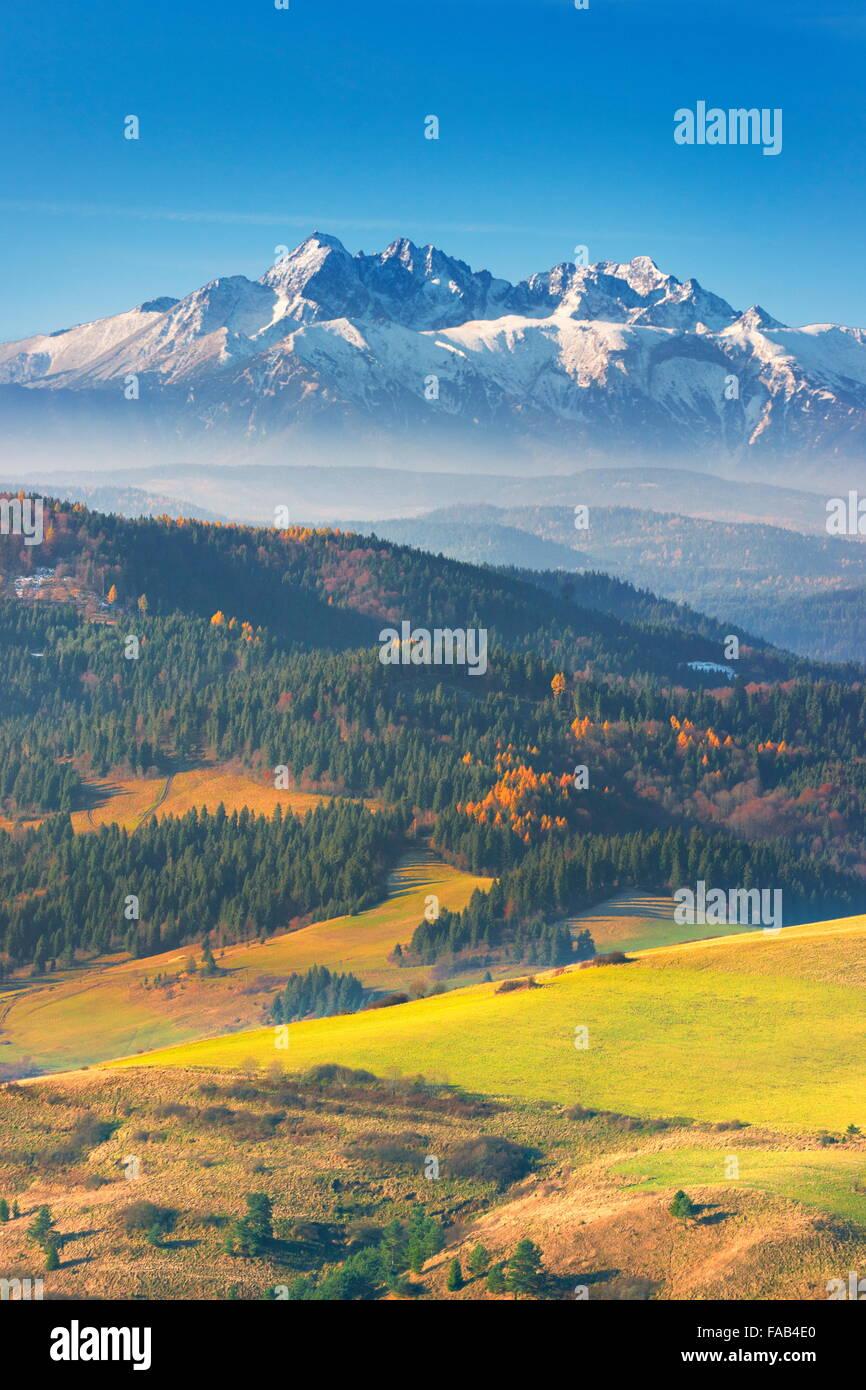 Monti Tatra - Vista dalla regione di Pieniny, Polonia Immagini Stock