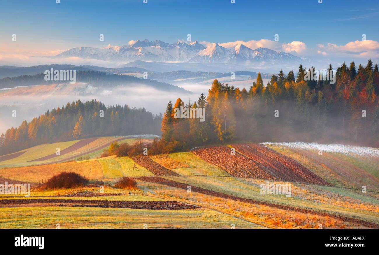 Monti Tatra - Vista dal Czorsztyn, Pieniny regione, Polonia Immagini Stock