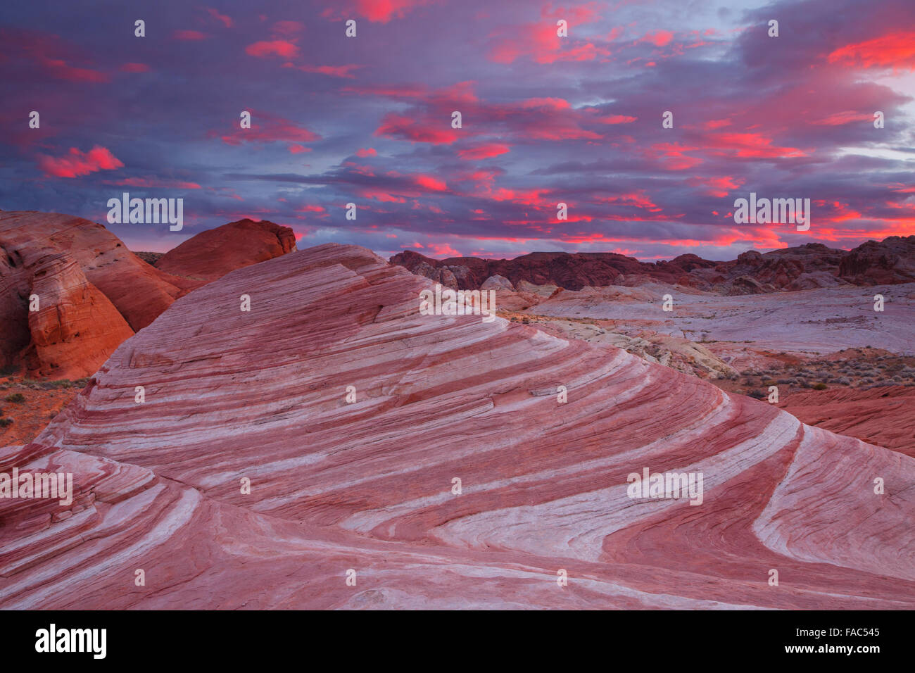 Onda di fuoco, la Valle del Fuoco State Park, vicino a Las Vegas, Nevada. Immagini Stock