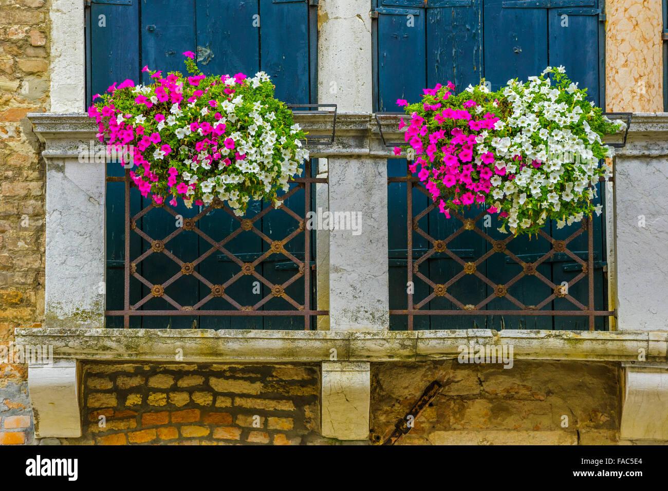 Fioriere Per Persiane ~ Persiane alle finestre e balcone con fioriera venezia foto