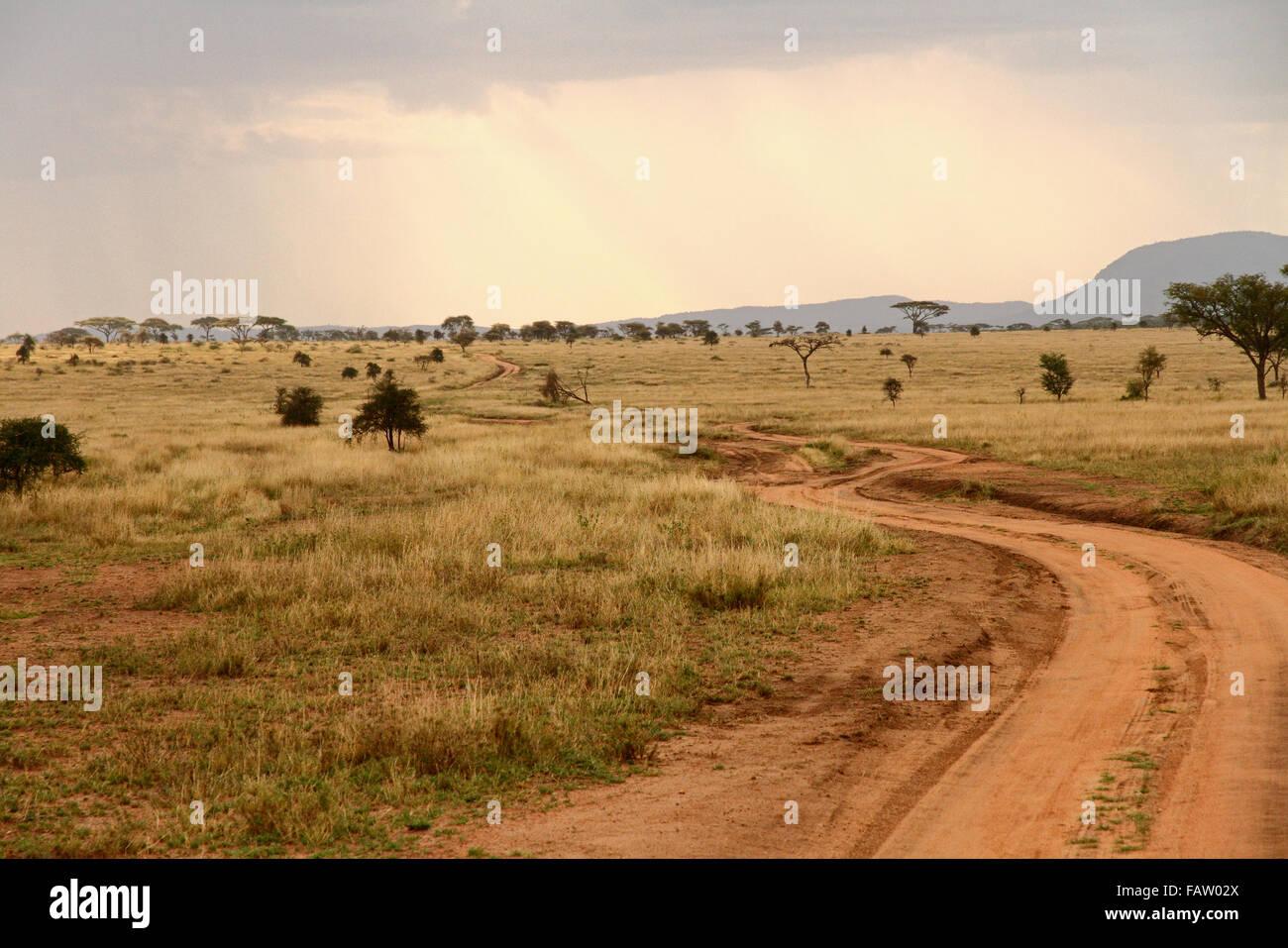 Una strada sterrata che si snoda attraverso la savana africana Immagini Stock