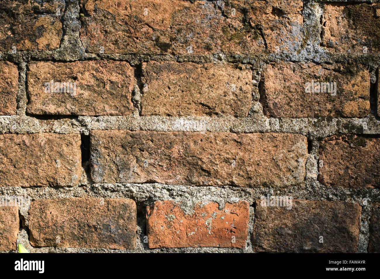 Muro di mattoni e sfondi Immagini Stock