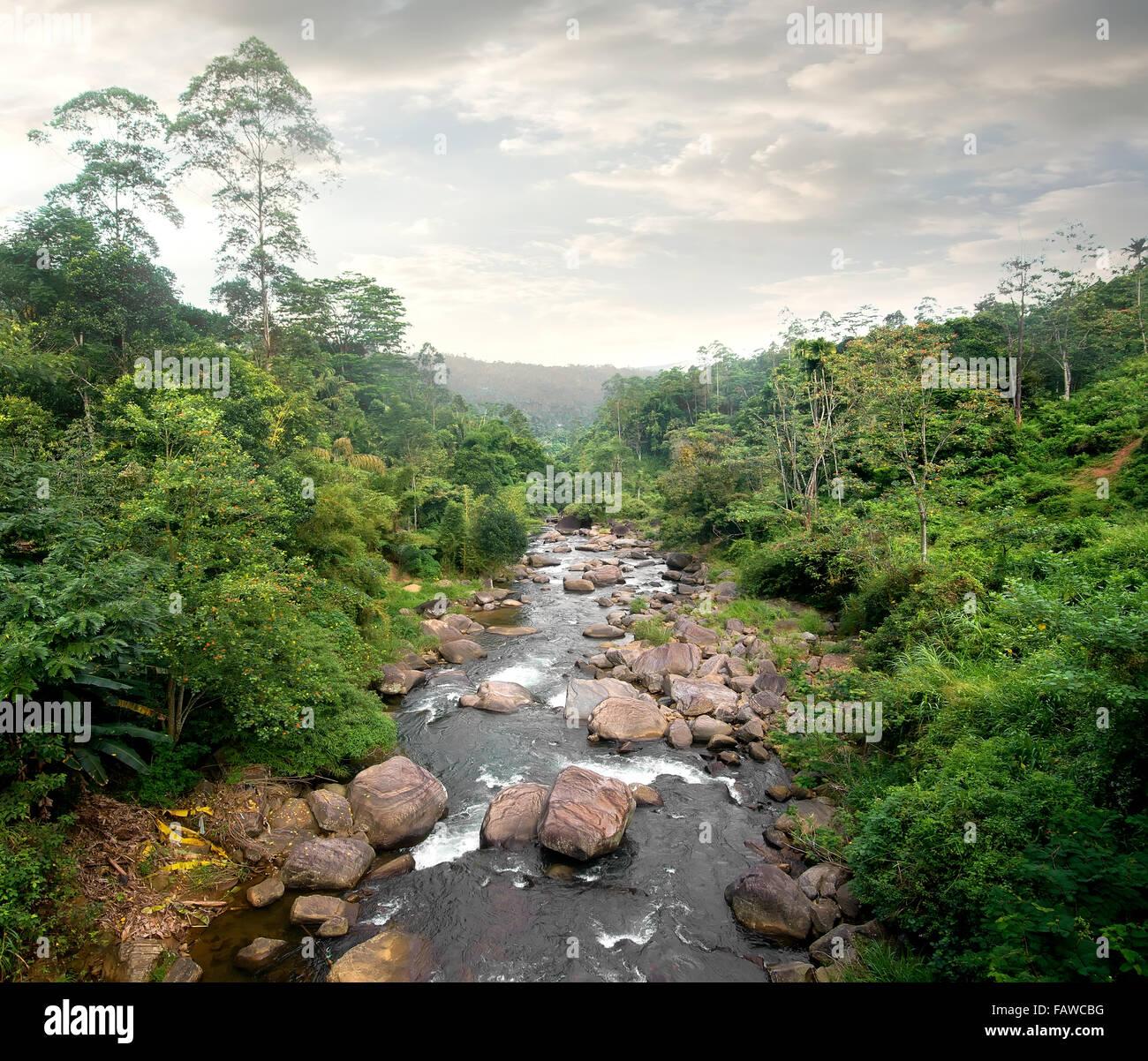 Le nuvole e il fiume nella foresta tropicale Immagini Stock