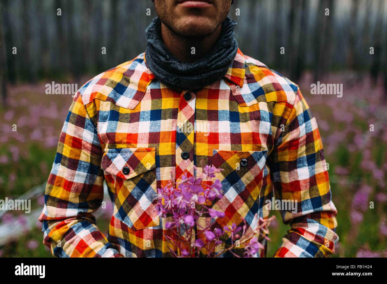 Vista ritagliata della metà uomo adulto che indossa controllato shirt holding fiori selvatici, Moraine Lake, Immagini Stock