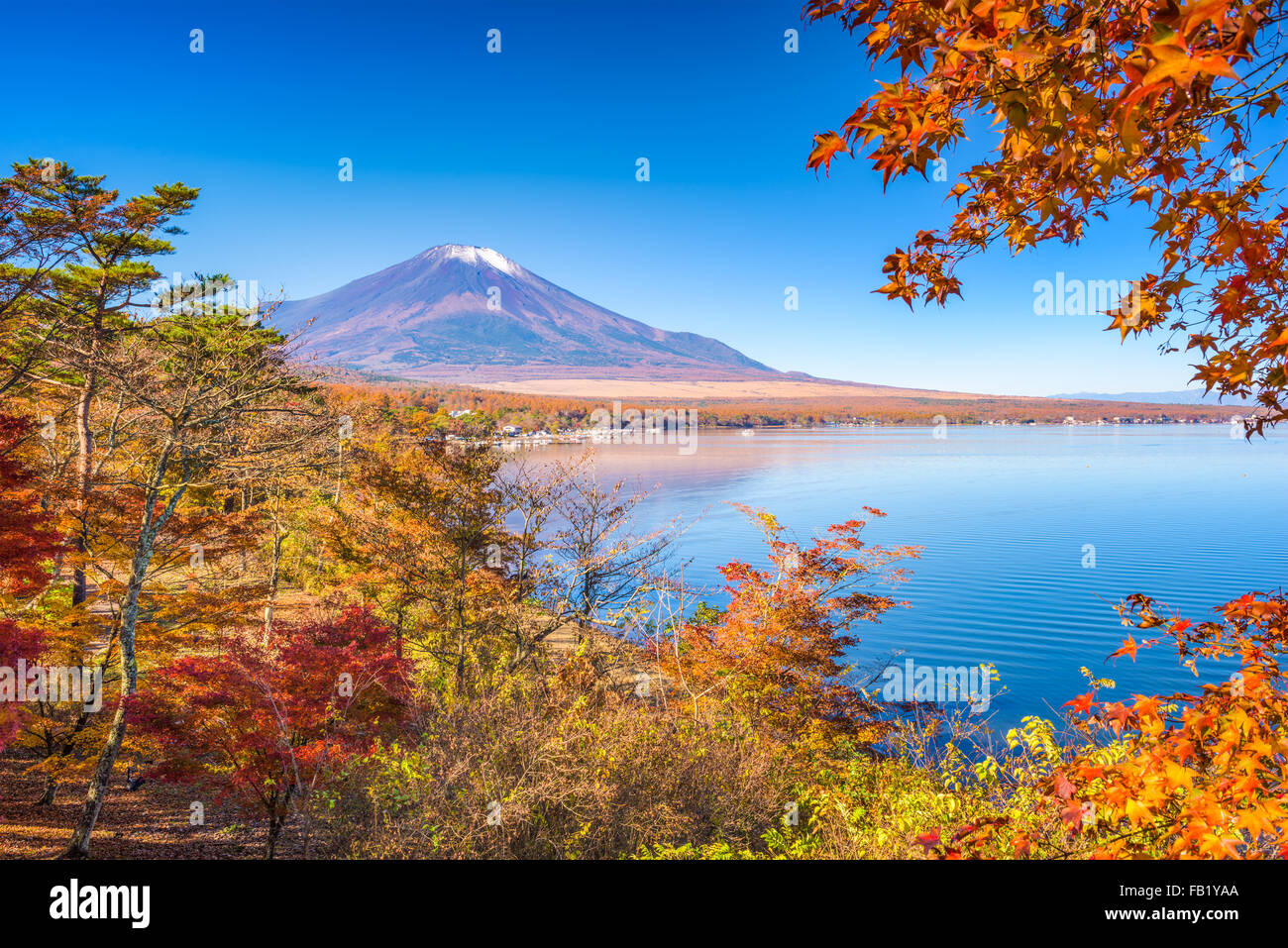 Mt. Fuji, Giappone da Yamanaka Lake in autunno. Immagini Stock