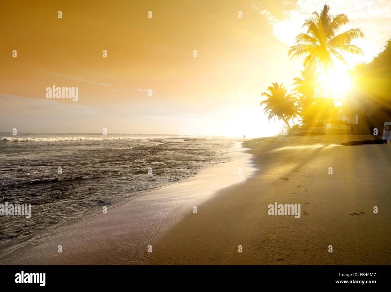 Orange Sky oltre oceano e spiaggia di sabbia Immagini Stock