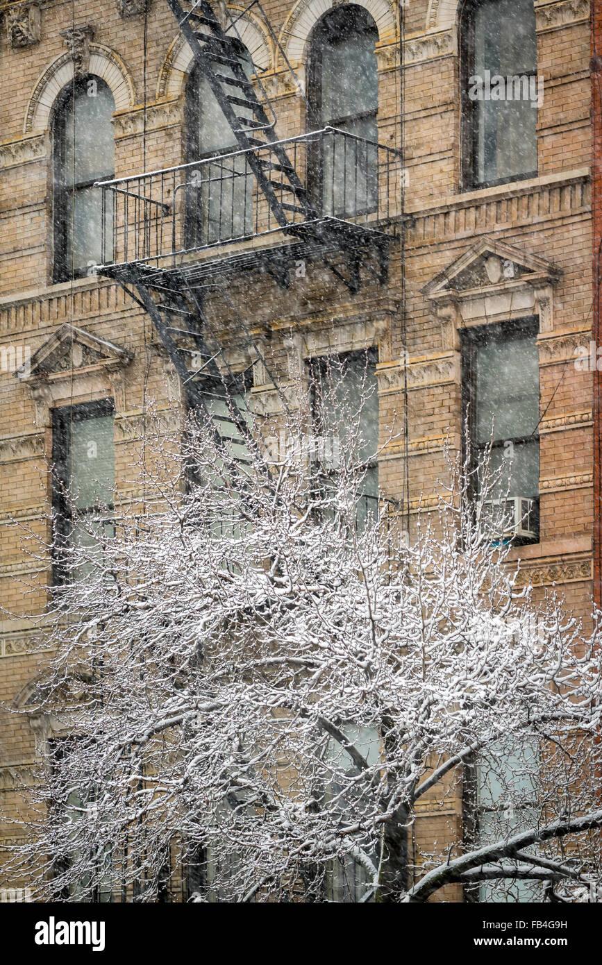 Chelsea edificio con via di fuga in caso di incendi e coperta di neve albero, tempesta di neve, Manhattan New York Immagini Stock