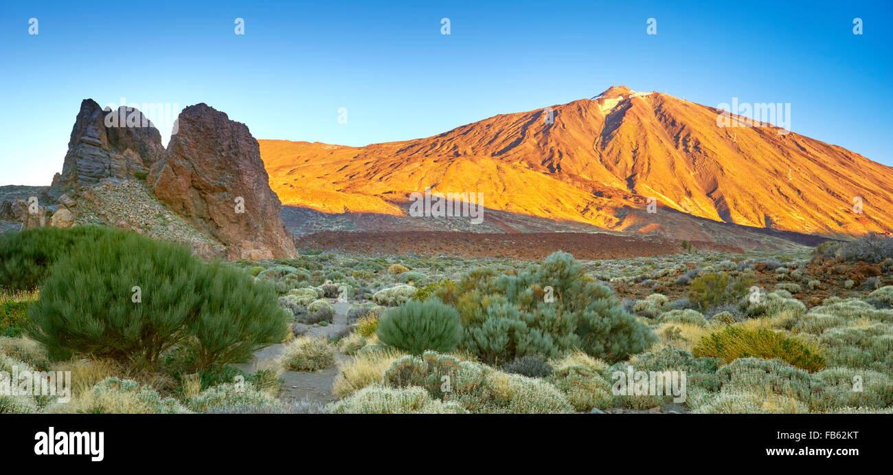 Parco Nazionale del Teide, Tenerife, Isole Canarie, Spagna Immagini Stock