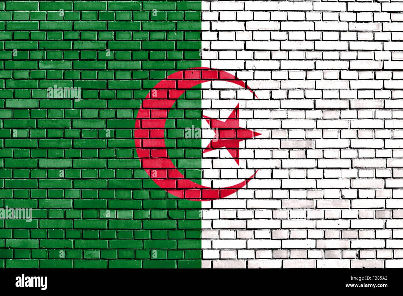 Bandiera di Algeria dipinta su un muro di mattoni Immagini Stock