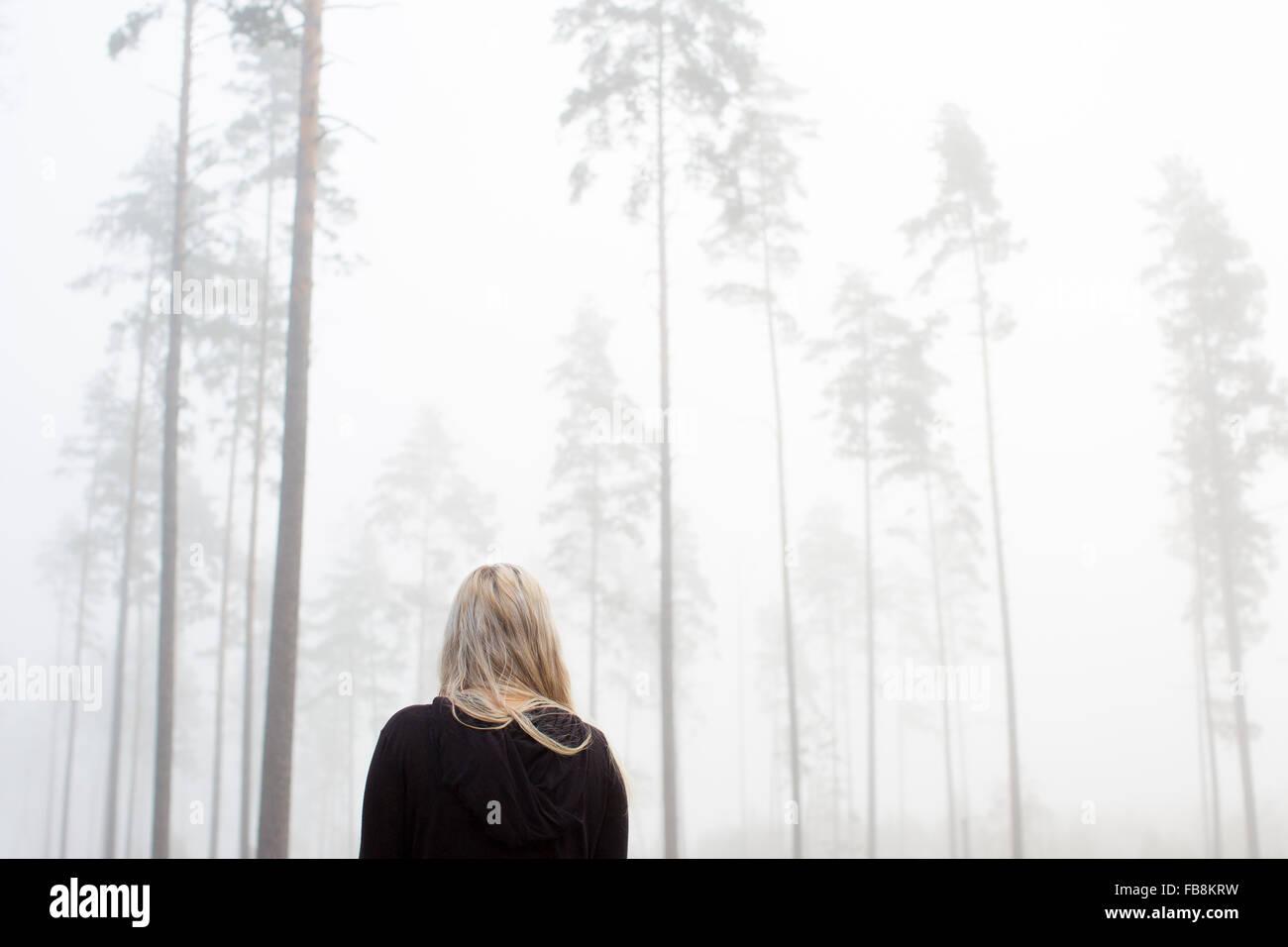 La Svezia Ostergotland, Donna nella nebbia Immagini Stock