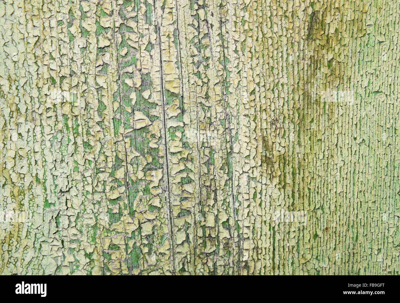 Colori Vernici Legno : Vecchia superficie di legno con peeling verde colore di vernice foto