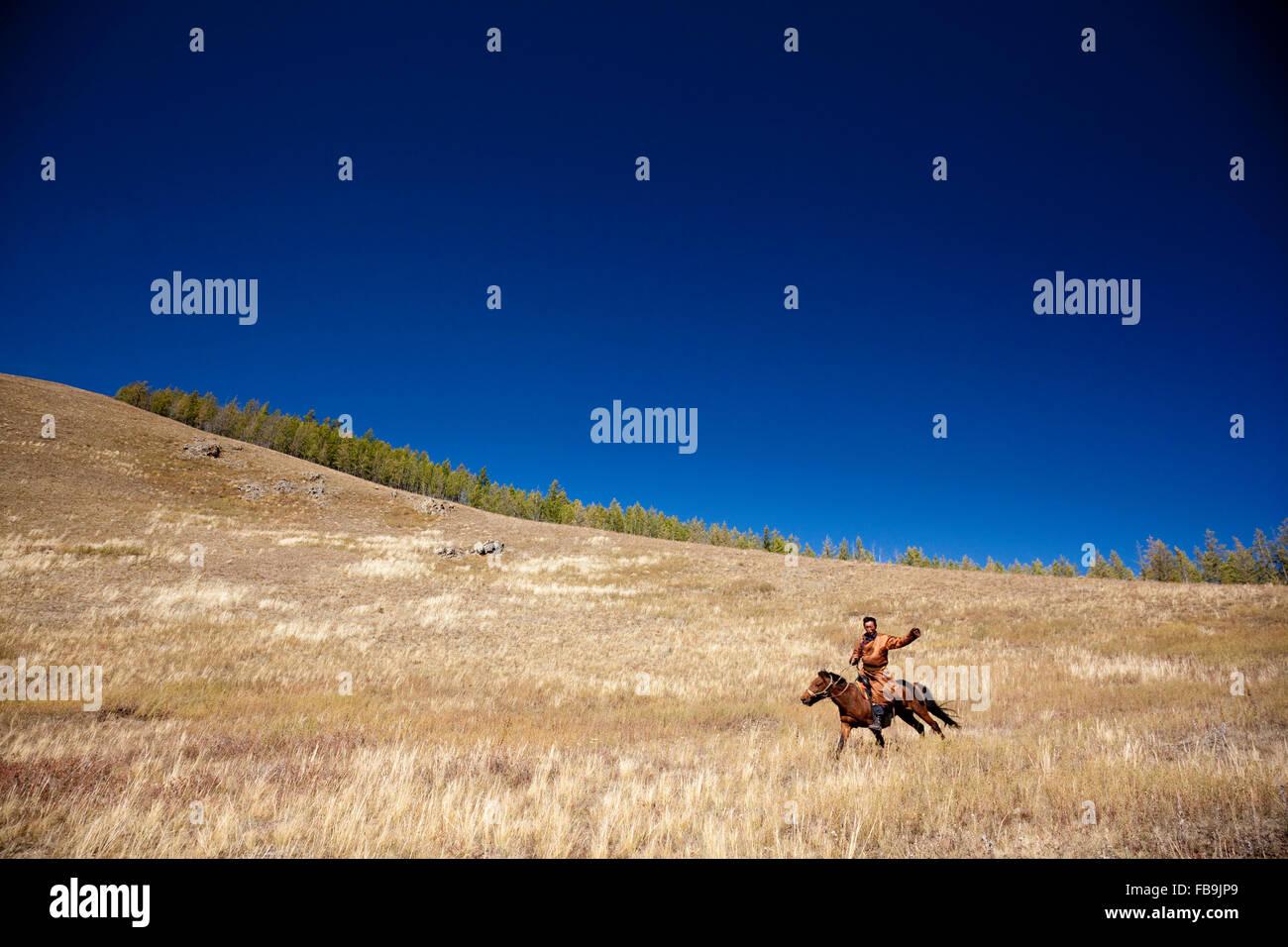 Un herder cavallo al galoppo attraverso Gorkhi Terelj National Park, Mongolia. Immagini Stock