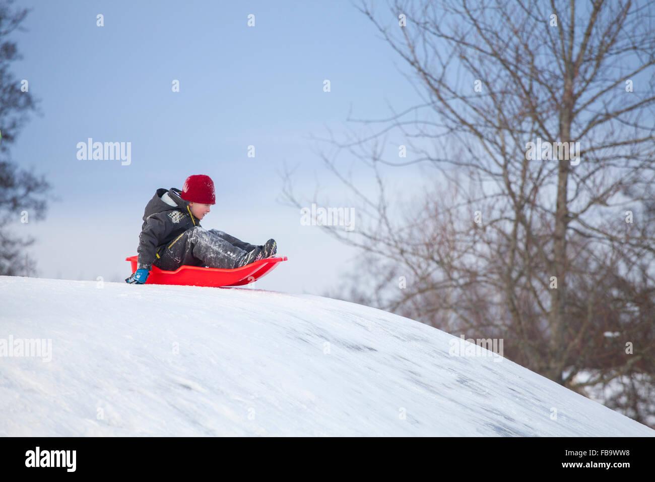 La Svezia, Vastergotland, Lerum, ragazzo (8-9) su sled Immagini Stock