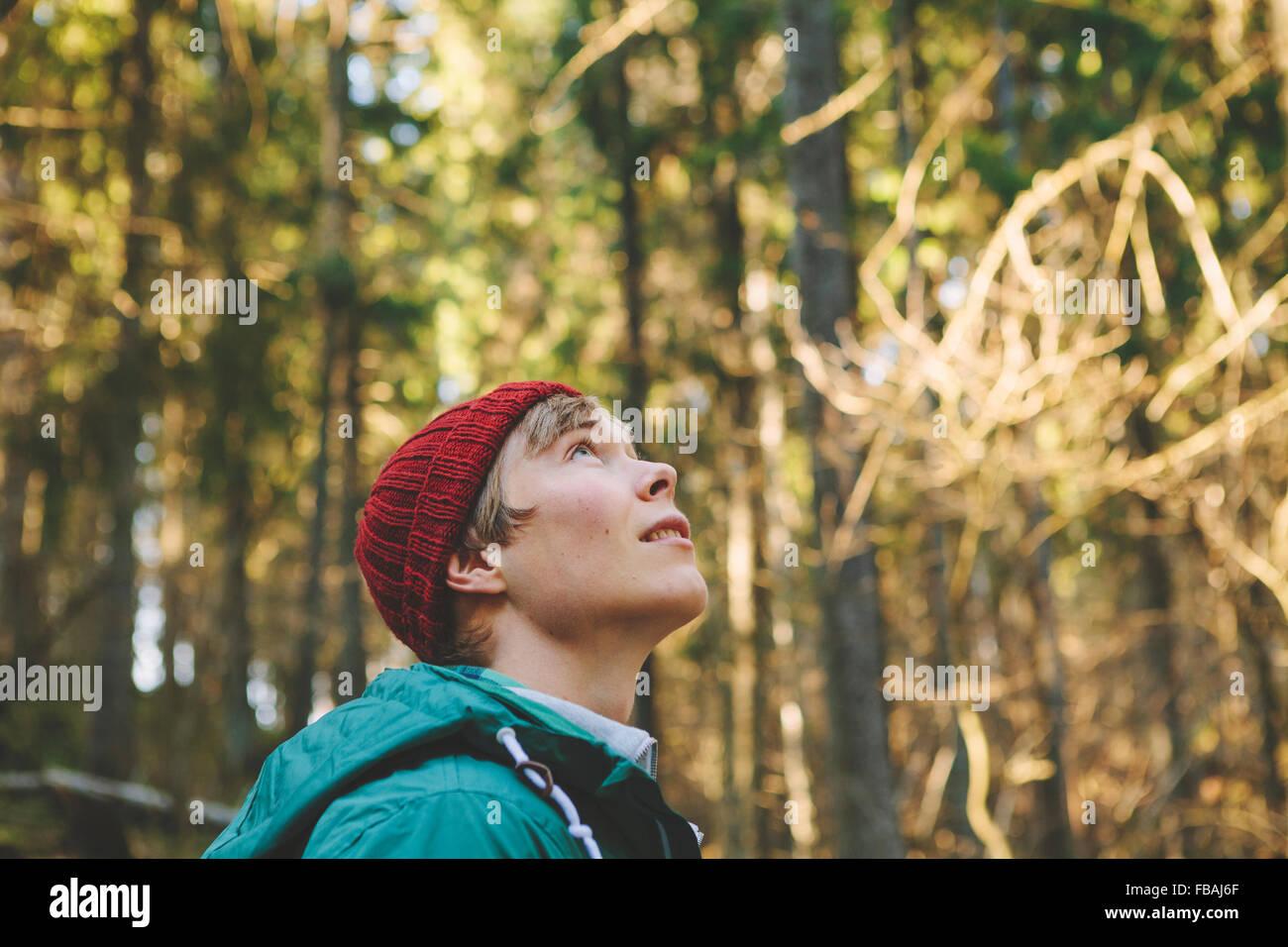 Finlandia, Esbo, Kvarntrask, Ritratto di giovane uomo nella foresta, guardando in alto Immagini Stock