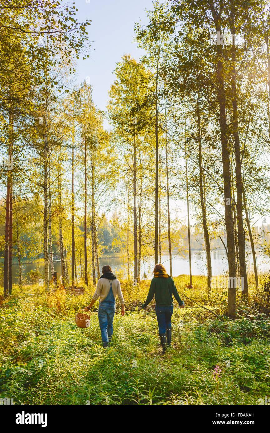 Finlandia, Etela-Savo, Huttula, due donne la raccolta di funghi in foresta Immagini Stock