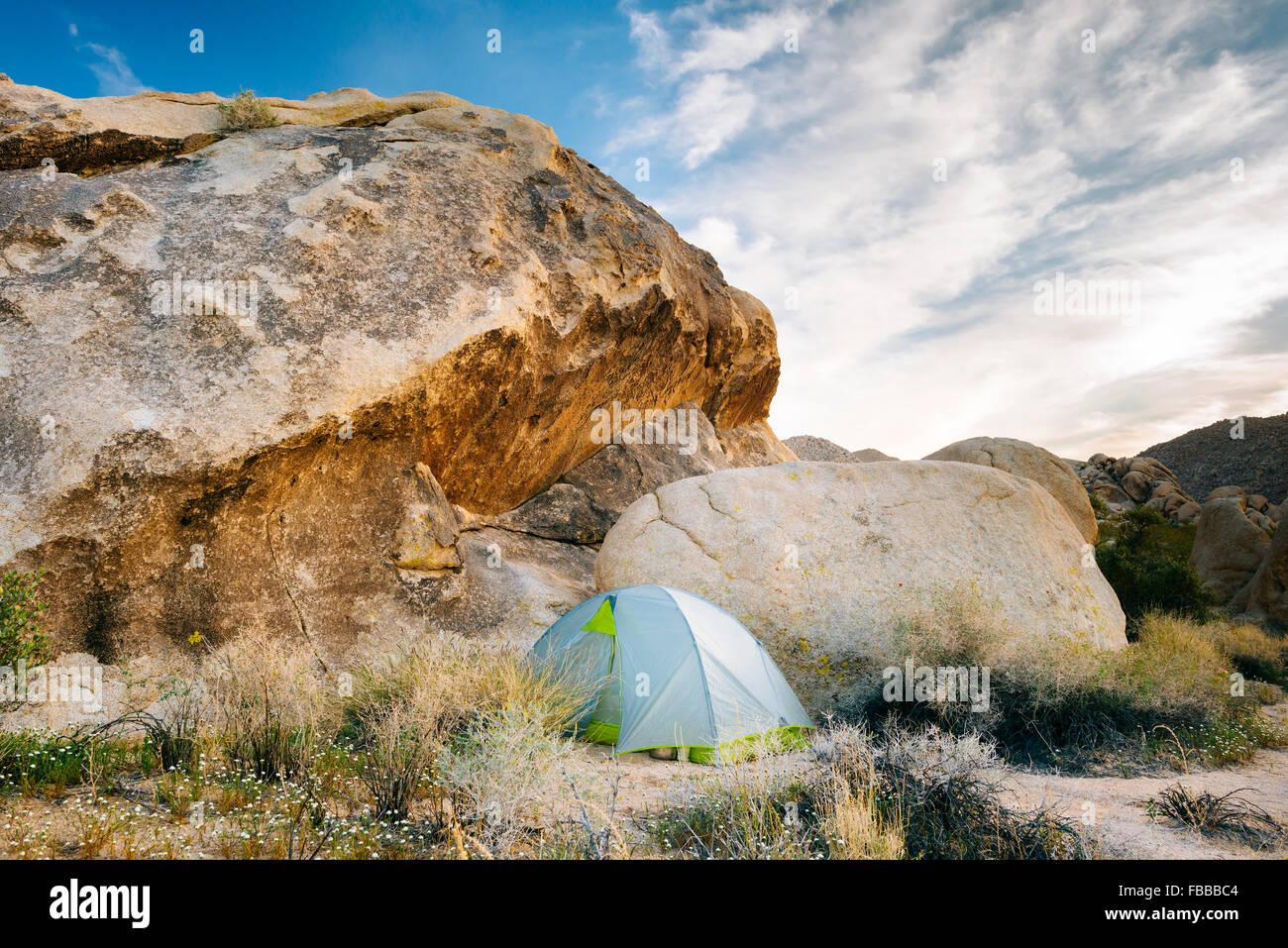 Camping lungo il Boy Scout Trail in Wonderland di Rocks, Joshua Tree National Park, California Immagini Stock