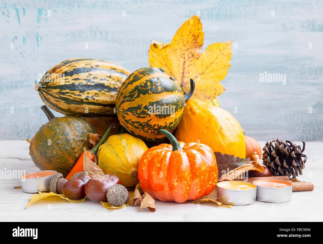 Varietà di zucche di autunno assortimento su legno verniciato Immagini Stock
