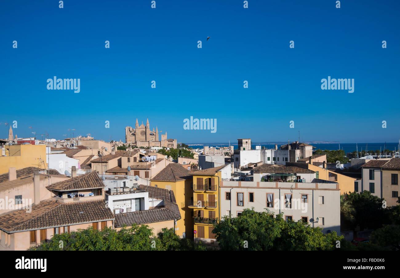 Viste di Palma de Maiorca con la cattedrale di Maiorca, isole Baleari, Spagna Immagini Stock