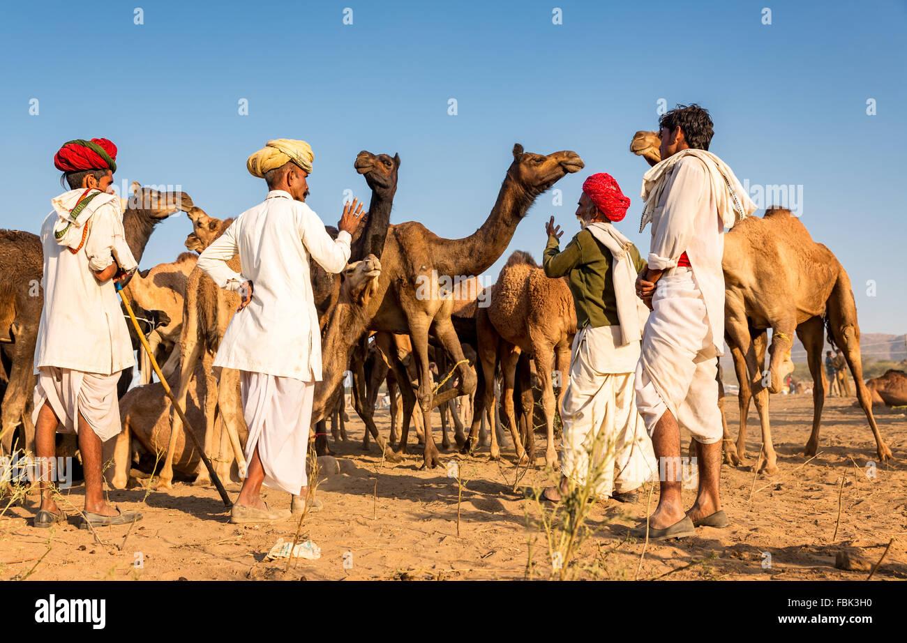 I commercianti del cammello discutere un affare durante l annuale Pushkar Camel Fair, Rajasthan in India Immagini Stock