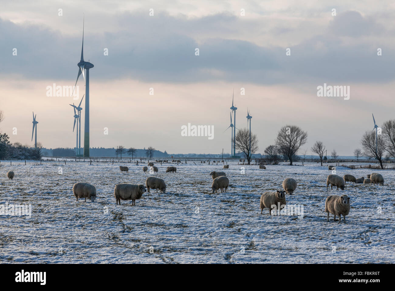 Paesaggio invernale, sito per energia di vento accanto a Dornum Immagini Stock