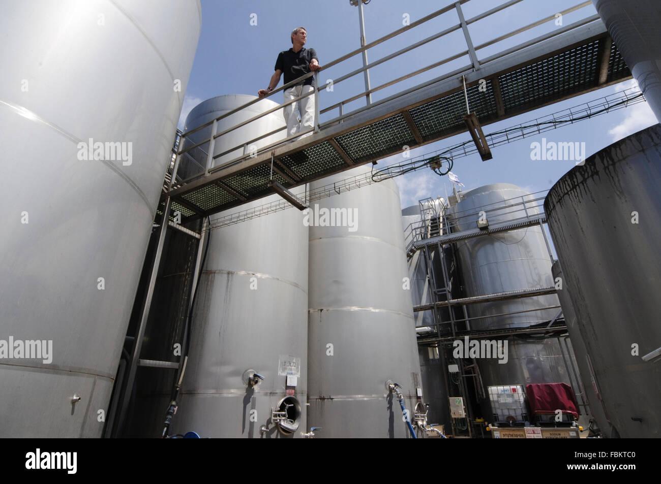 Vigneto Golan Winery, botti di acciaio, Qazrin, Golan, della Galilea, Israele Immagini Stock