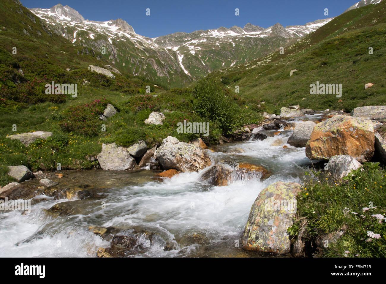 Ruscello di montagna nel passo del Uomo, Grigioni, Svizzera Immagini Stock