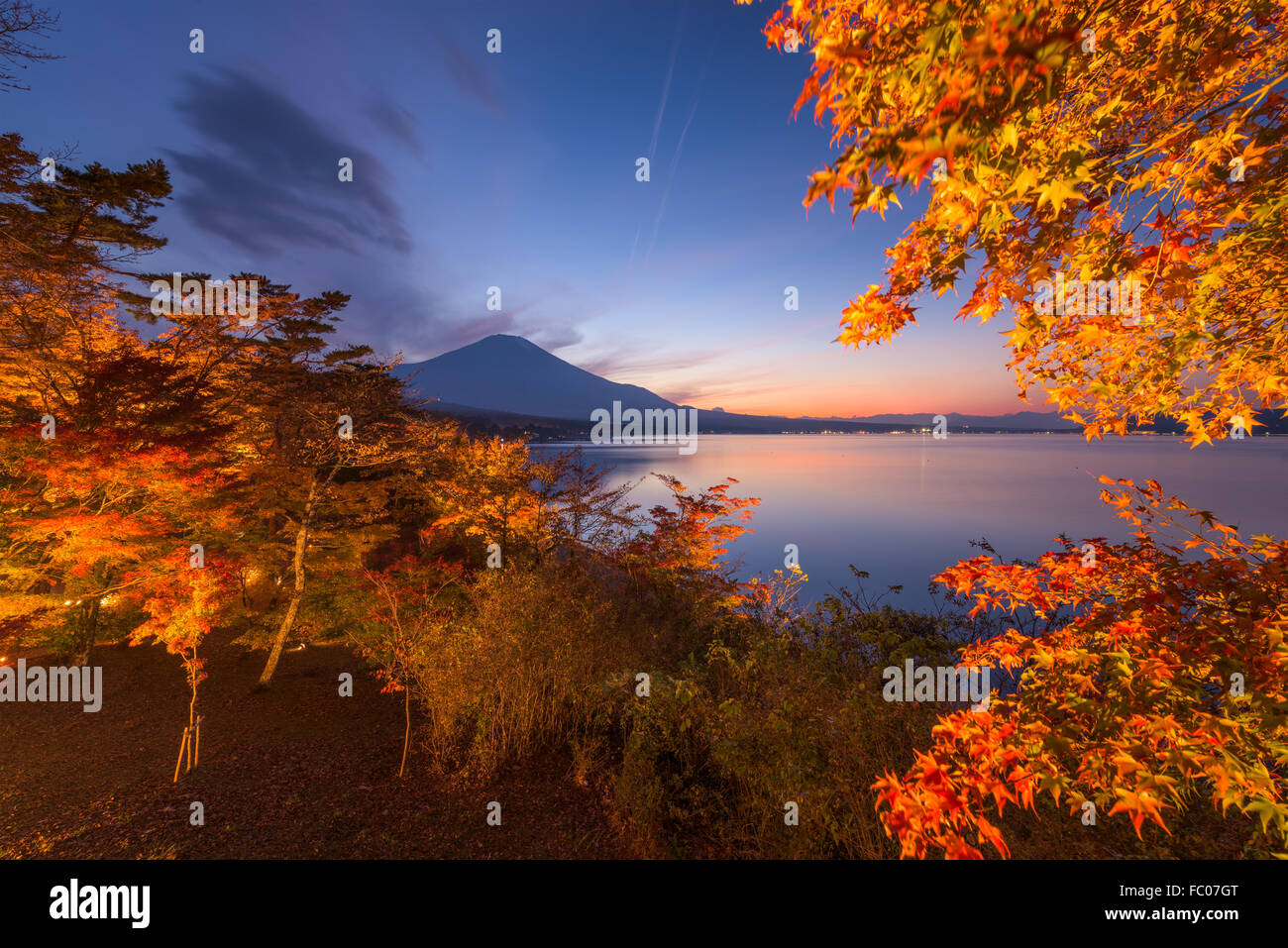 Mt. Fuji, Giappone durante l'autunno dalla riva del lago Yamanaka. Immagini Stock