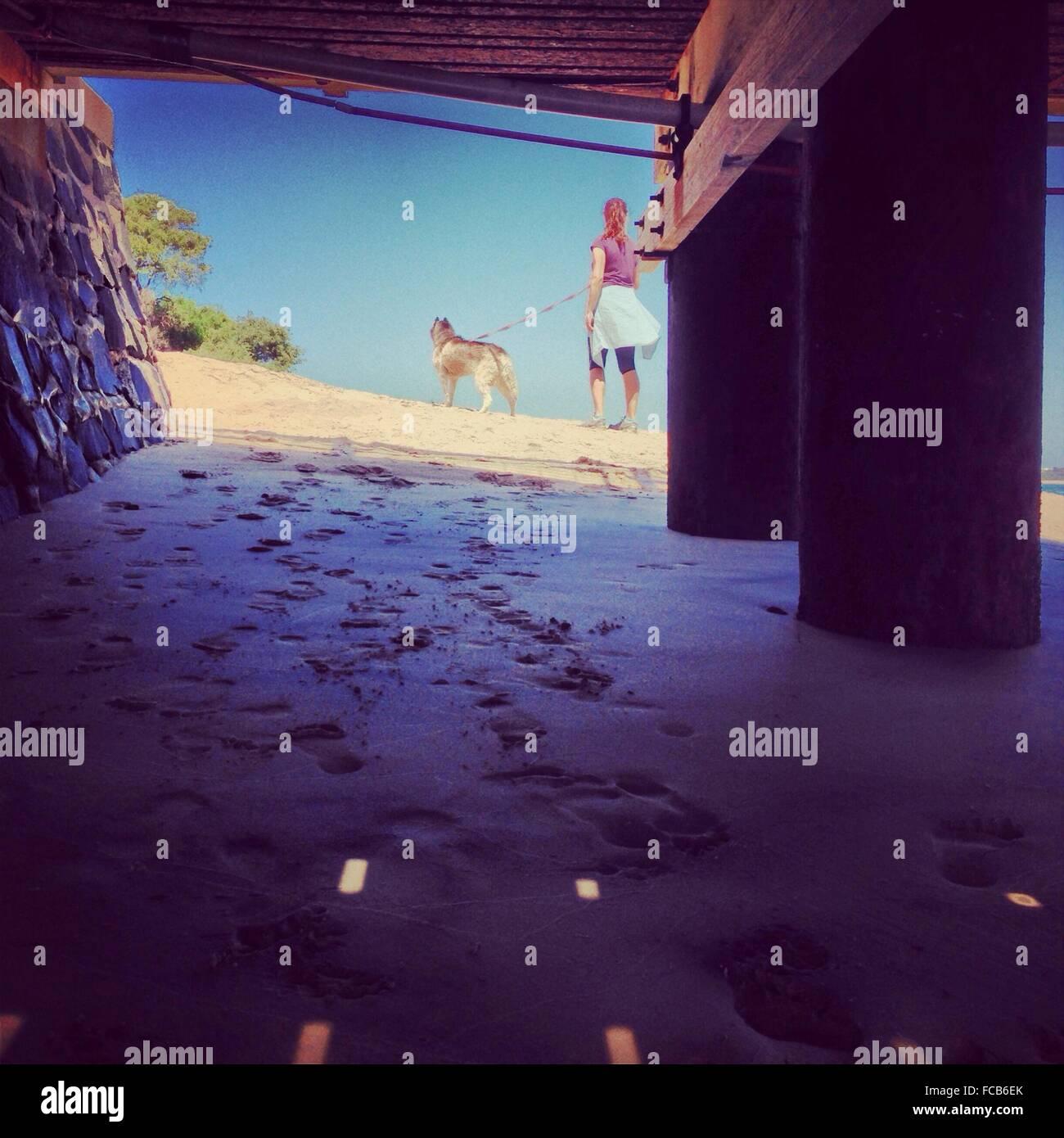 Donna con cane in spiaggia visto dal di sotto del molo Immagini Stock