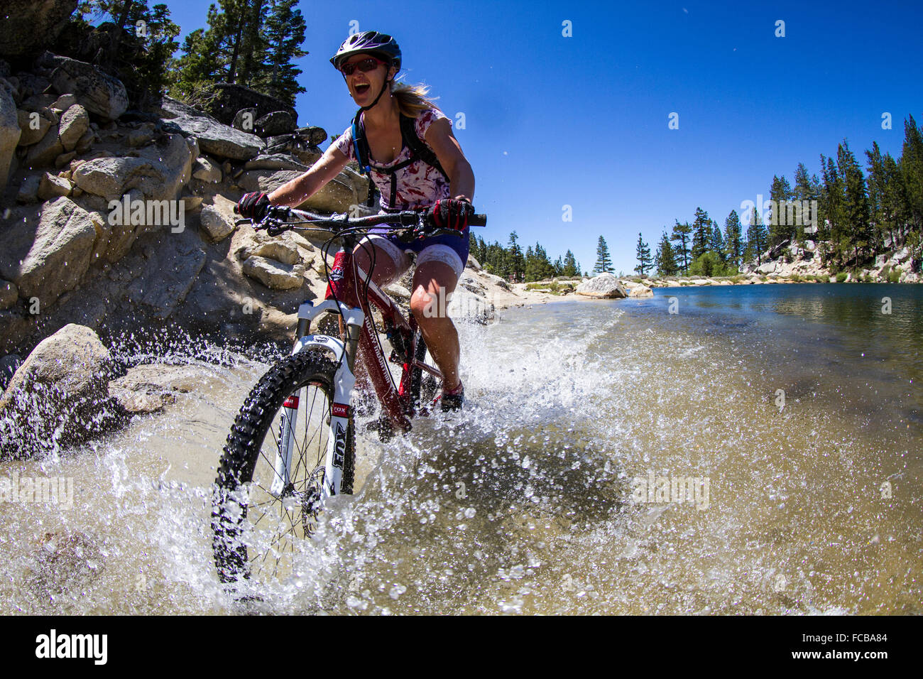 Mountain bike sui Flume Trail, Tahoe, CA Immagini Stock