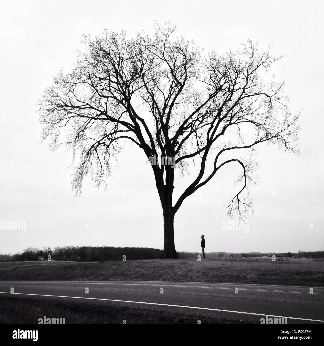 Uomo in piedi accanto ad albero Immagini Stock