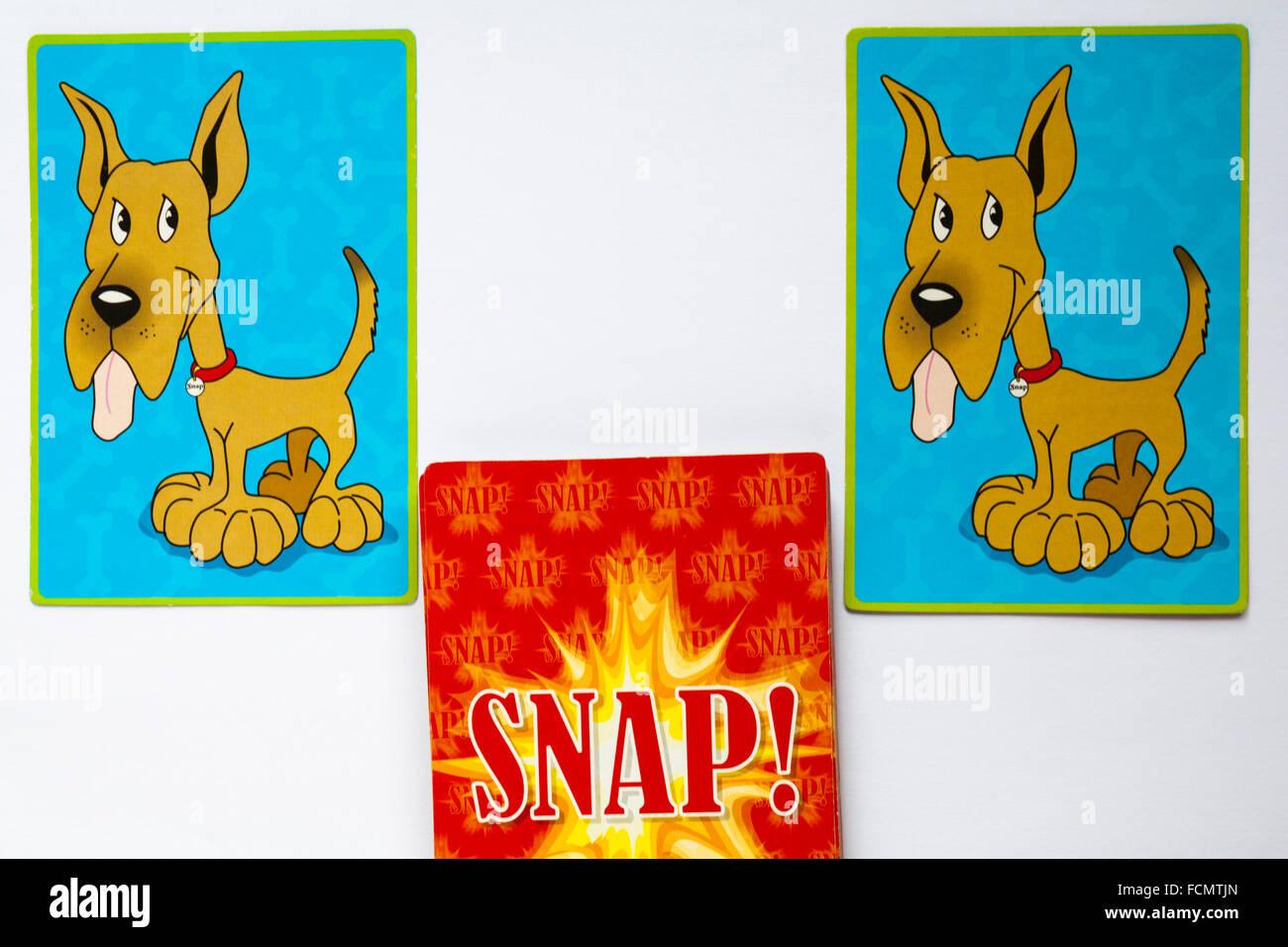 Giocare carte a scatto con abbinamento di cani con linguetta appendere fuori impostato su sfondo bianco Immagini Stock