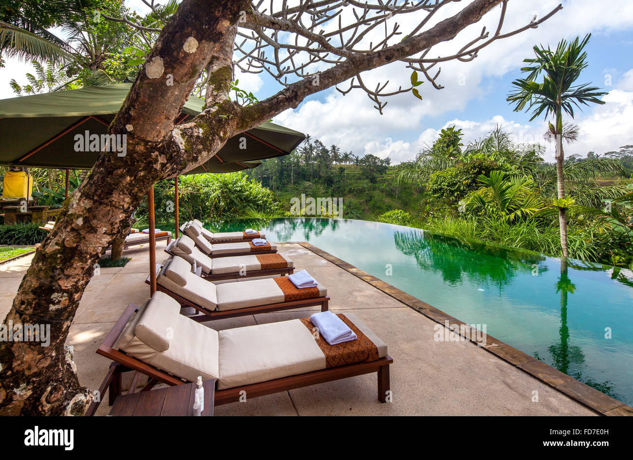 Hotel resort con piscina e palme, Ubud, Bali, Indonesia, Asia Immagini Stock