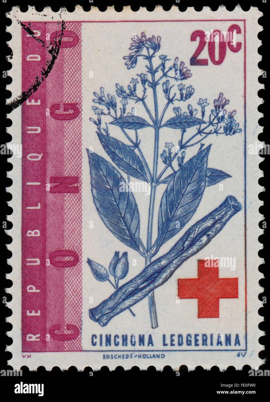 CONGO - circa 1963: un timbro stampato in Congo mostra China ledgeriana e la croce rossa Immagini Stock