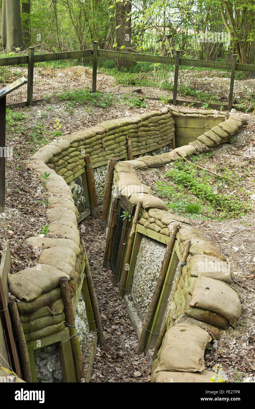 Trincee ricostruito a Thiepval legno. Gli uomini della trentaseiesima Ulster Division ha attaccato il Schwaben Redoubt Immagini Stock